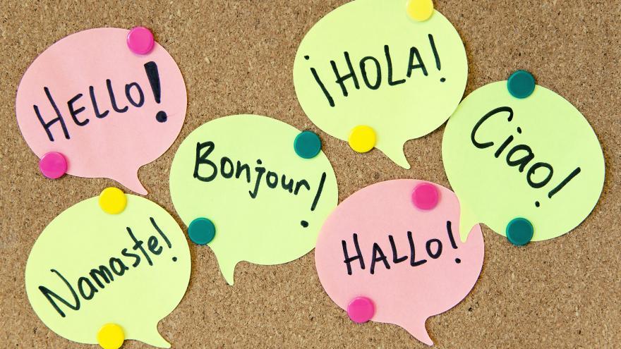 pegatinas con palabras en diferentes idiomas
