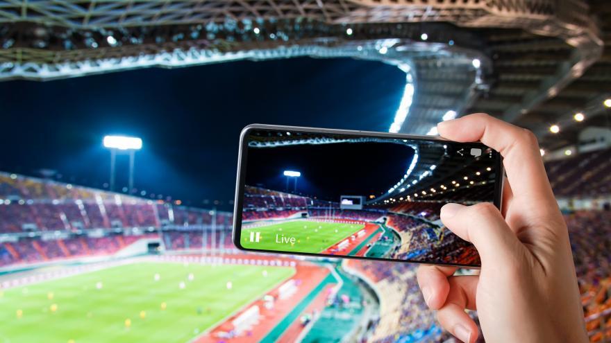 Apostamos por la innovación y digitalización del sector deportivo para adaptarse a la situación generada por el COVID-19