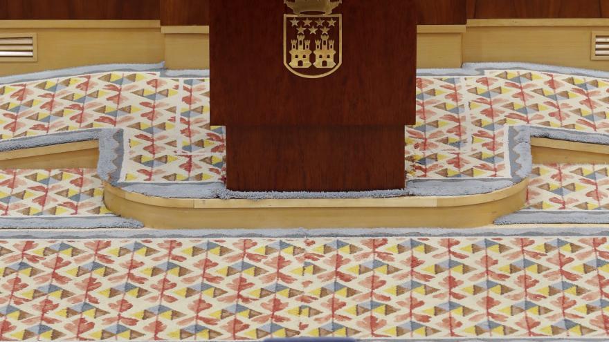 Isabel Díaz Ayuso en el pleno