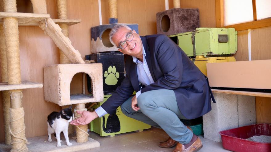 Carlos Izquierdo presenta la campaña 'Vacaciones para todos, mi mascota siempre conmigo'