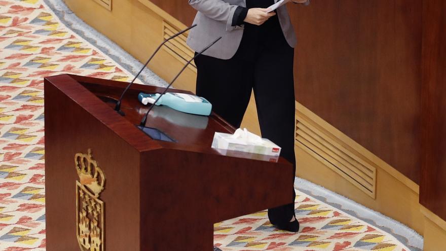 La presidenta en el Pleno