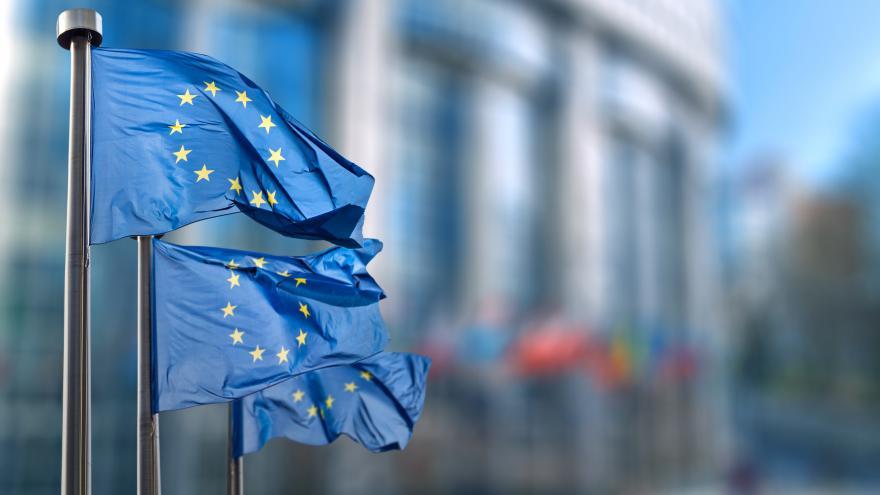Banderas Unión Europea