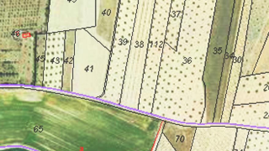 Imagen de polígonos y parcelas en un mapa