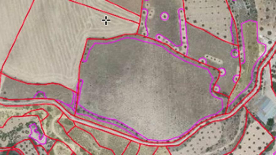 Imagen de captura del visor SIGPAC