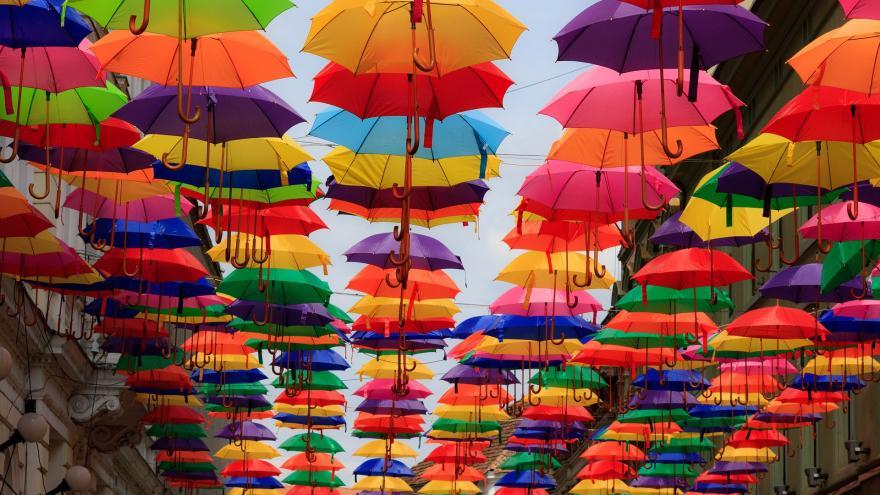 Paraguas de colores abiertos