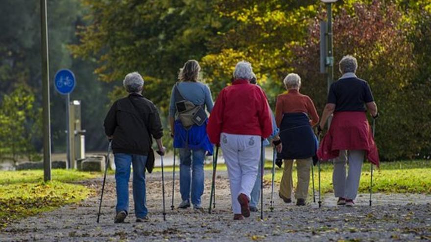 Adultos haciendo marcha nórdica en un parque