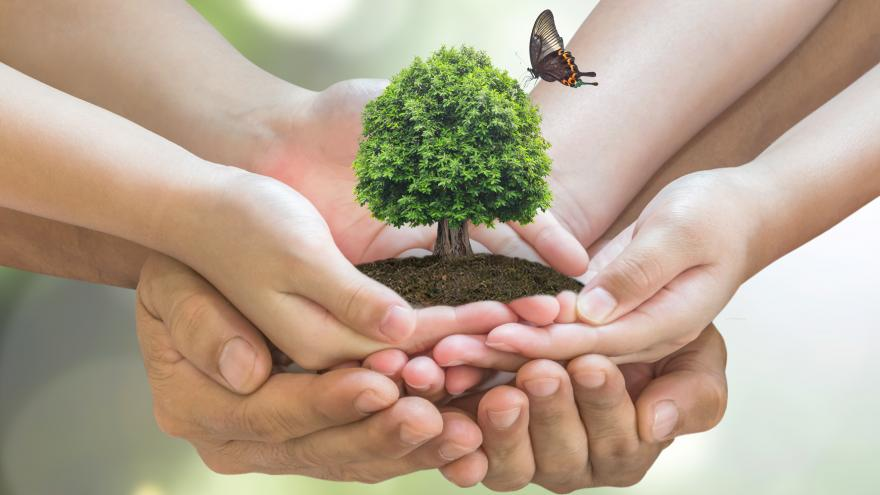 Protección del medioambiente