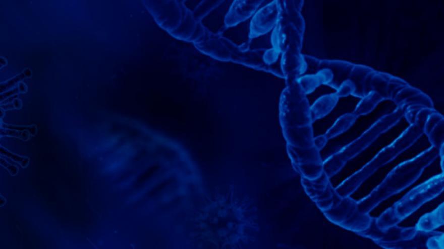 Fundación para la Investigación e Innovación Biomédica de Atención Primaria