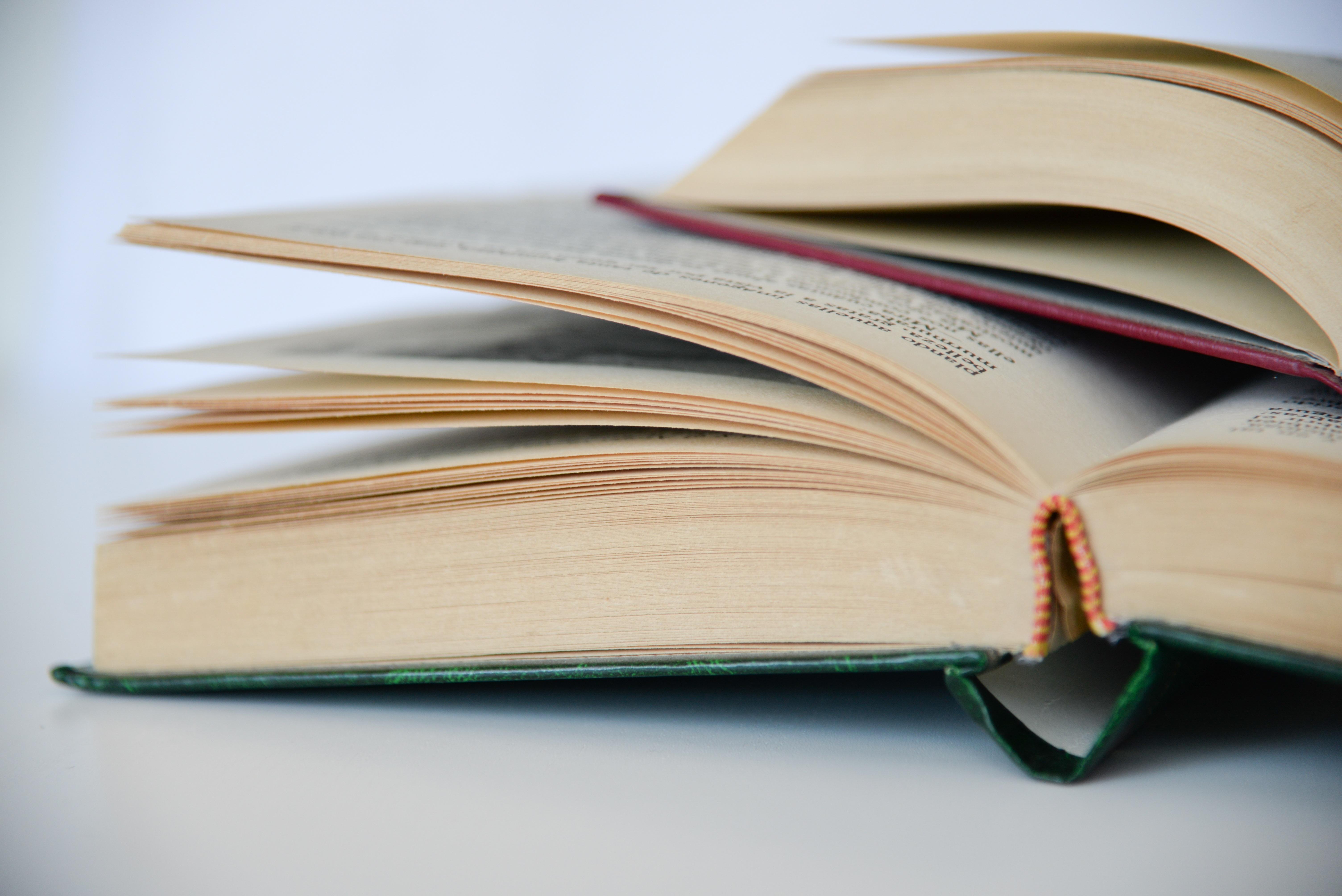 Área de Lenguas y Literaturas Modernas
