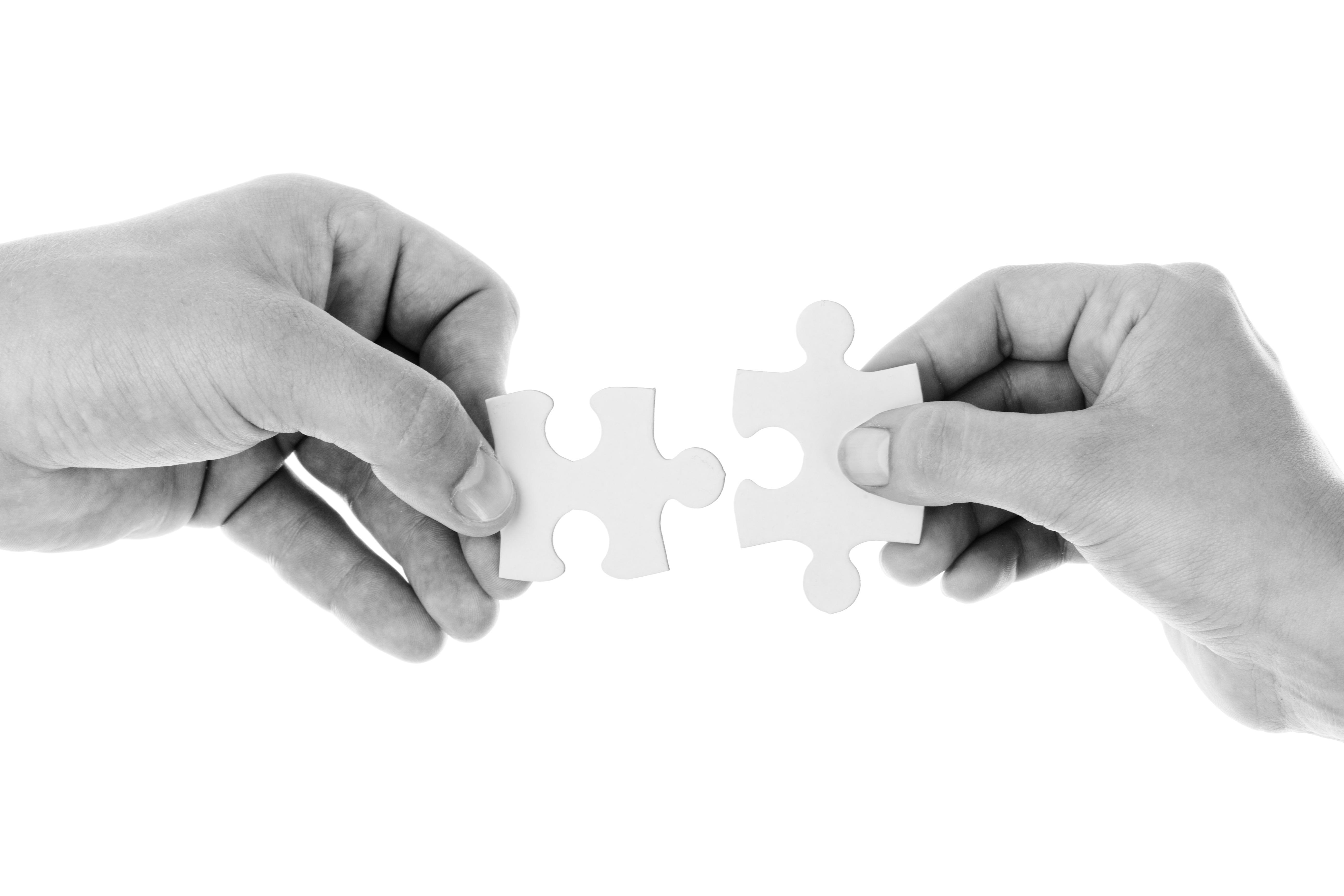 Imagen puzzle_Fusión de Fundaciones