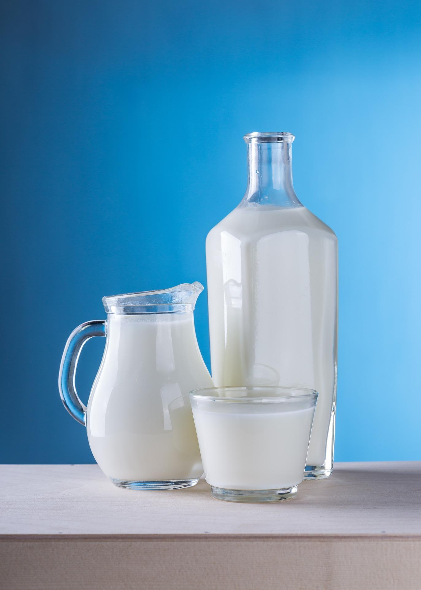 Varias jarras con leche