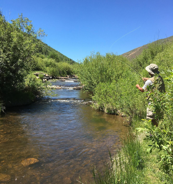 Pesca en río