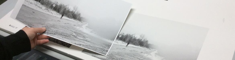 Detalle de unas fotografías de paisajes de bosques en tonos grises