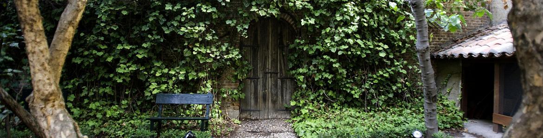 Puerta de madera, camino de piedra, árboles y hiedra
