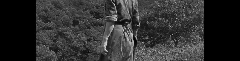 imagen del cartel de la película O que arde en la que se ve a su protagonista de espaldas en un campo