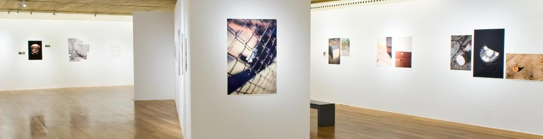Escultura en forma de águila en un patio empedrado