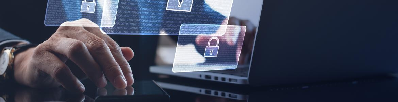 ciber delincuencia