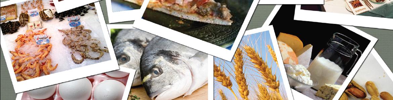 Portada sobre la publicación de alérgenos en alimentos envasados