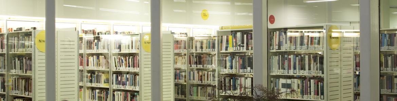 Biblioteca Luis Martín-Santos
