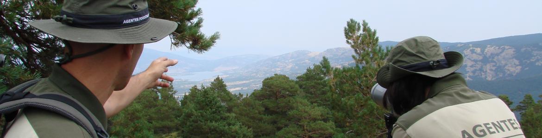 Agentes Forestales en un puesto vigilando el monte