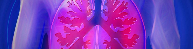 Imagen icónica de pulmones humanos