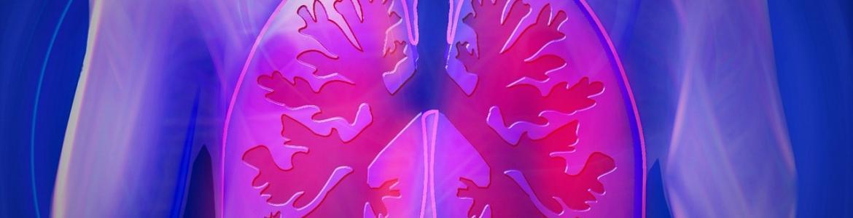 Esquema de los pulmones