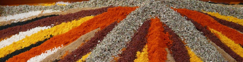 Distintas especias en polvo de colores dispuestas en líneas