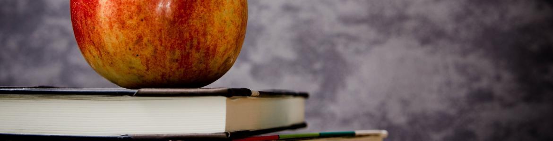 Jornada y Comedor escolar | Comunidad de Madrid