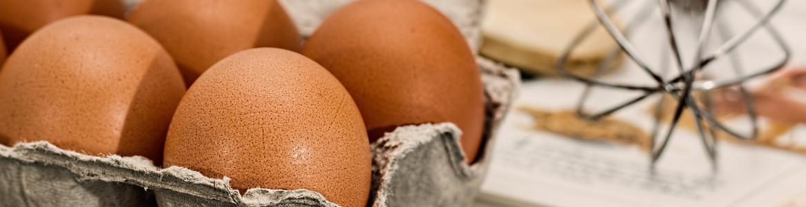 Huevos con cáscara en una huevera