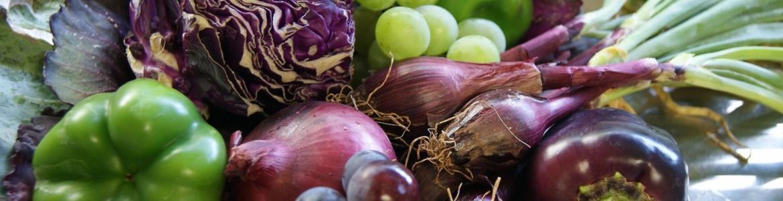 imagen vegetales para objetivod