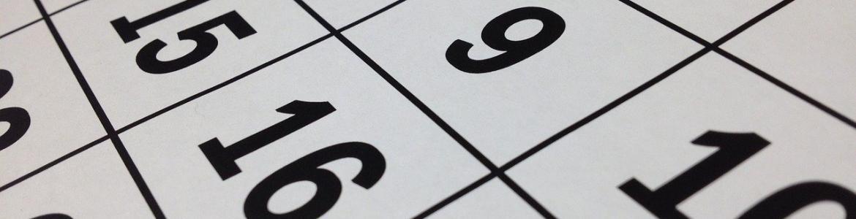 Calendario acceso universidad