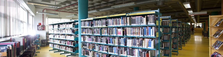 Biblioteca Miguel Hernández (Puente de Vallecas)