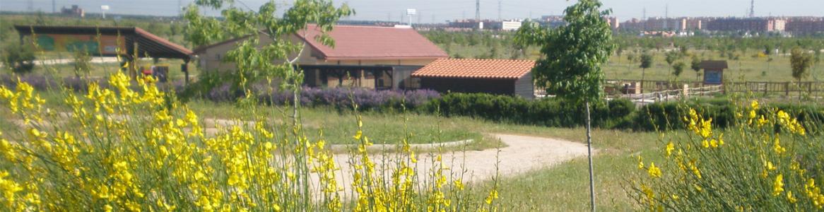 Vista del Centro de educación ambiental Bosque Sur