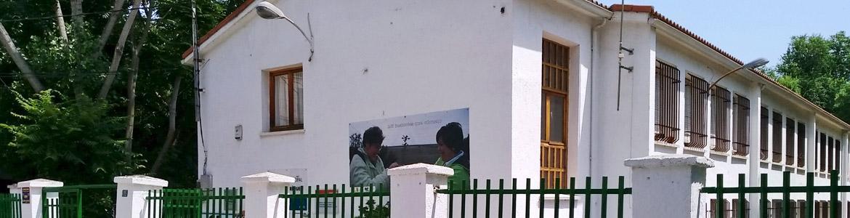 "Centro Ocupacional ""Cuarentainueve"" AMPinto"