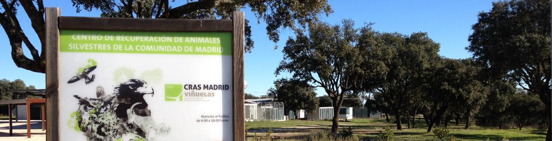Instalaciones CRAS-Madrid
