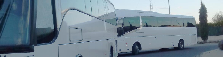 Autobuses Blancos