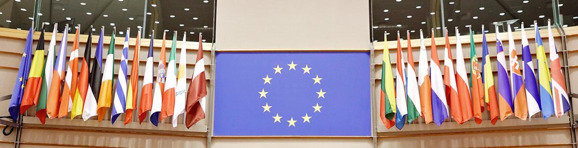 Banderas de los paises miembros de la UE y en el centro la de la UE