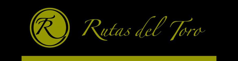 Web Madrid Rutas del Toro