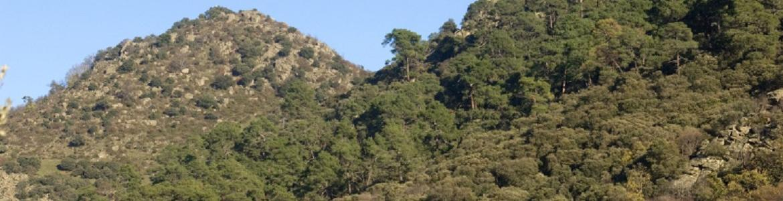 Lomas de La Almenara