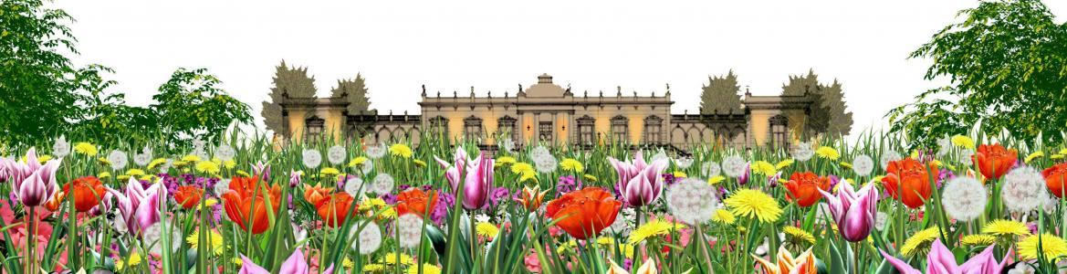 VA-Jardín florido