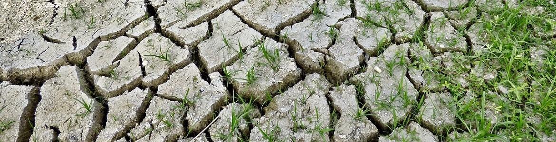 Suelo sequía