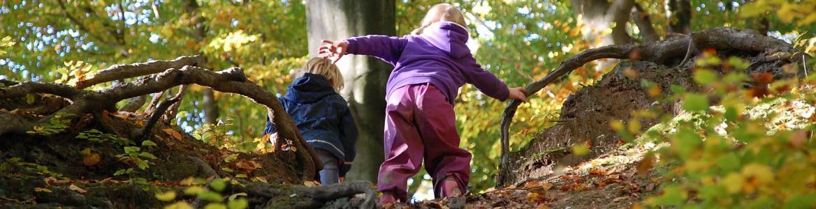 Imagen niños bosque
