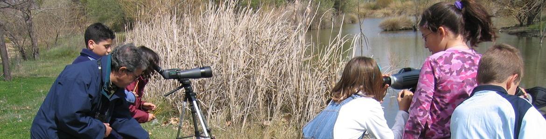 Niños observando aves en Polvoranca