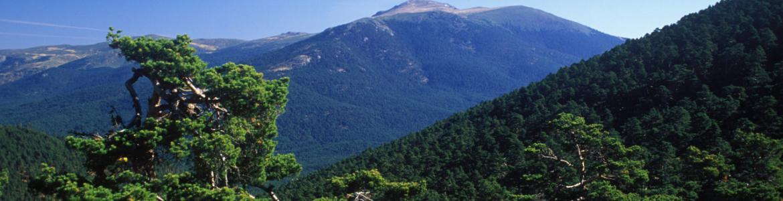 Imagen sierra de Guadarrama