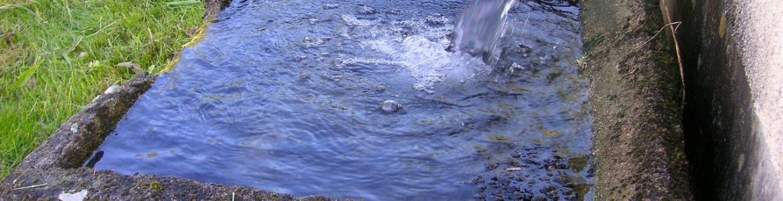 Abrevadero chorro de agua