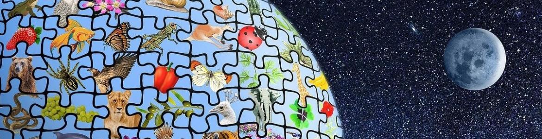 Planeta puzzle animales y plantas