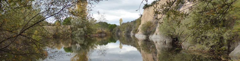 Embalse pinos La Jarosa