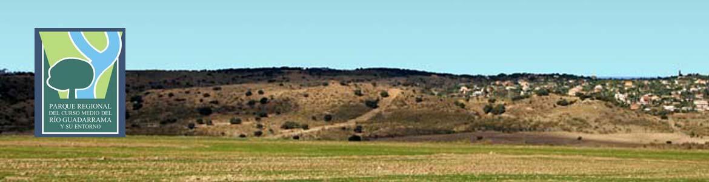 Paisaje de la senda de Valdemorillo a Villanueva de la Cañada