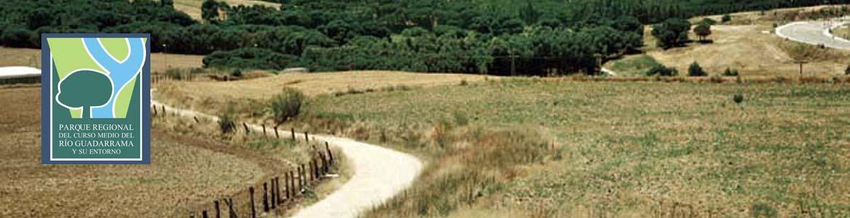 Paisaje de la Senda de Arroyomolinos a Móstoles y Loranca
