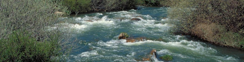 Corriente del río Lozoya